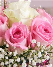 Angelic Congrats Roses in a Vase