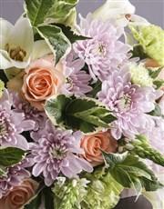 Radiant Colour Blossoms