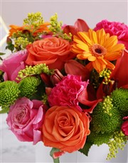 Radiant Variety Blooms