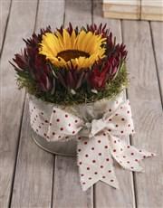 Polka Dot Sunflower Tin