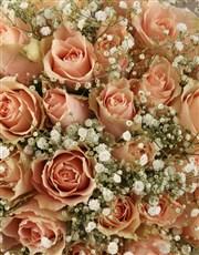 Peach Roses Sympathy Bouquet
