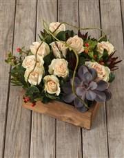 Peach Rose and Succulent Arrangement