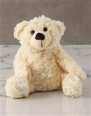 Blue New Baby Plush Bear and Balloon Box