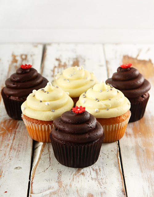 birthday: Chocolate and Vanilla Cupcake Combo!