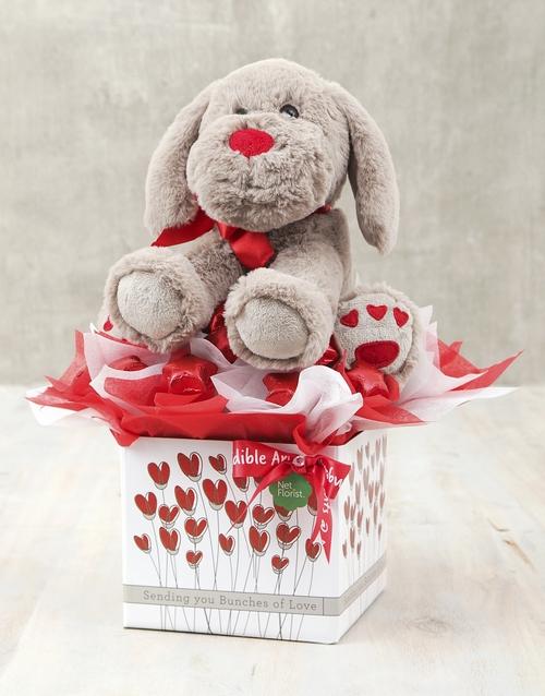 teddy-bears: Puppy Love Box!
