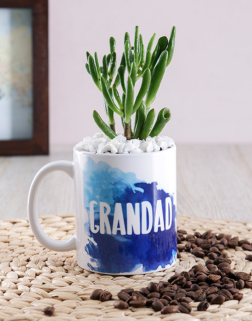 grandparents-day: Grandad Succulent Mug Gift!
