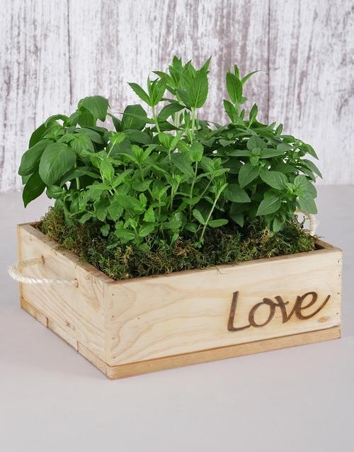 anniversary: Herb Garden in Wooden Flower Box!