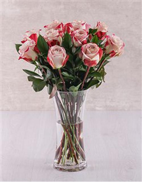 colour: Candy Cane Rose Vase!