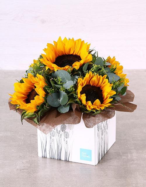 colour: Striking Sunflower Box!