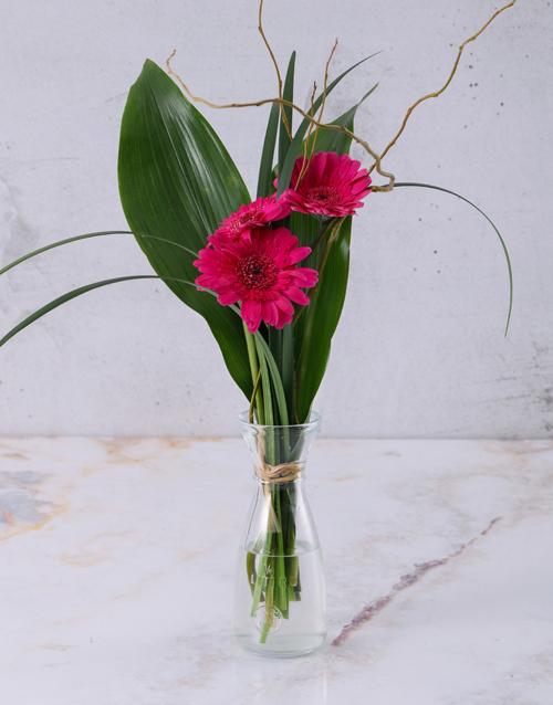 birthday: Stepped Pink Gerberas!