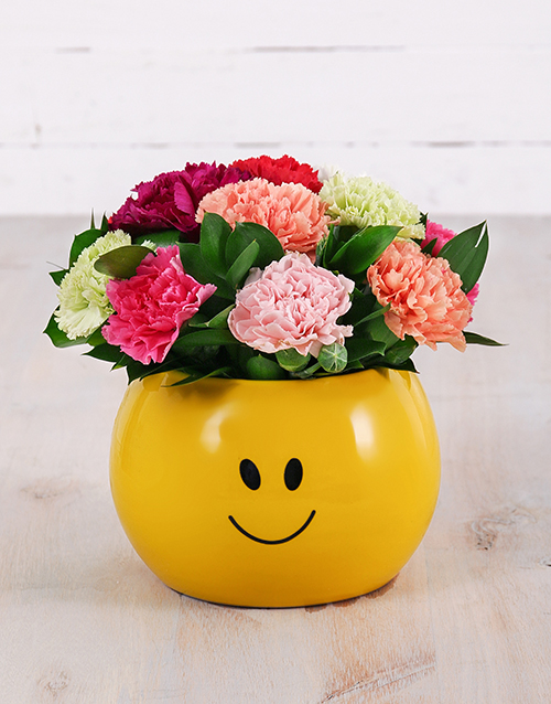 birthday: Mixed Carnations in Smiley Pot!