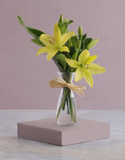 colour: Milk Jug of Lilies!