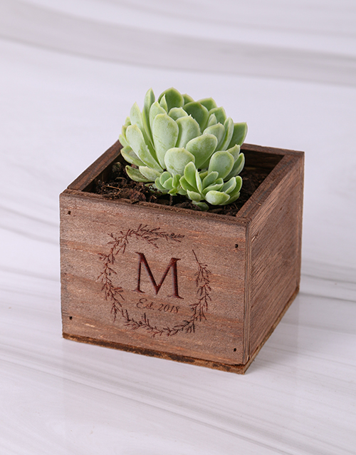 bosses-day: Personalised Laurel Wooden Box with Succulent!