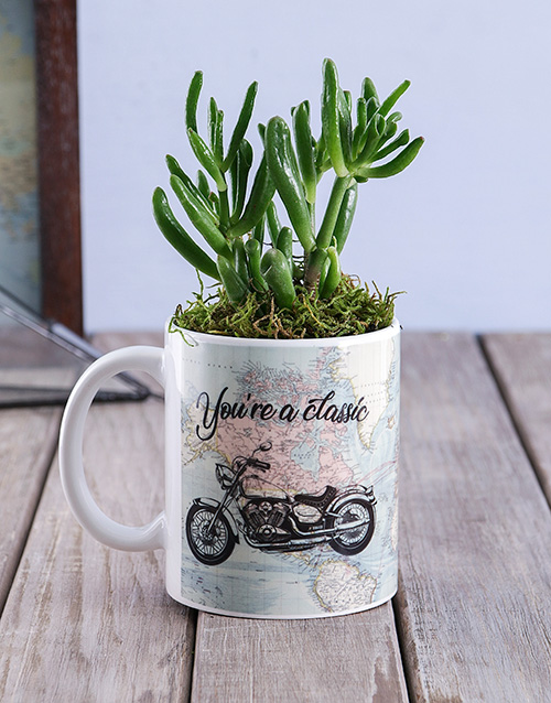 anniversary: Classic Succulent Mug!