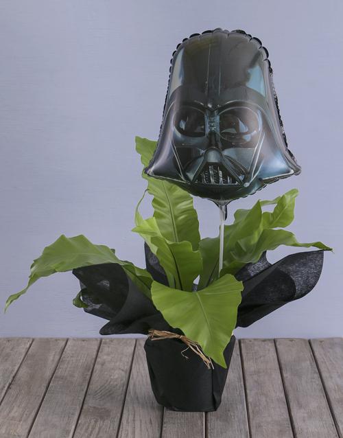 fathers-day: Asplenium Nidus With Darth Vader Balloon!
