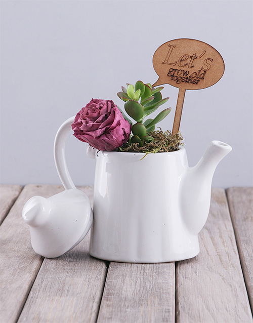 anniversary: Grow Old Together Rose And Succulent Teapot!