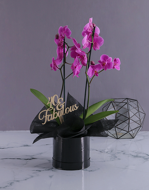 colour: Personalised Fabulous Birthday Orchids!