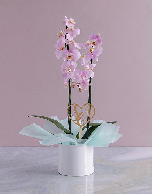 anniversary: Personalised Initialed Heart Orchid in a Hatbox!