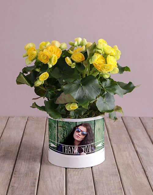year-end: Personalised Begonia Thank You Arrangement!