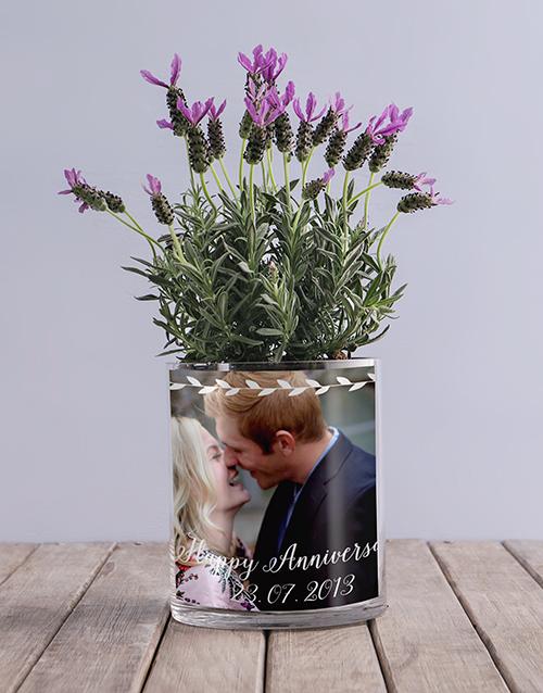 colour: Anniversary Lavender Photo Vase!
