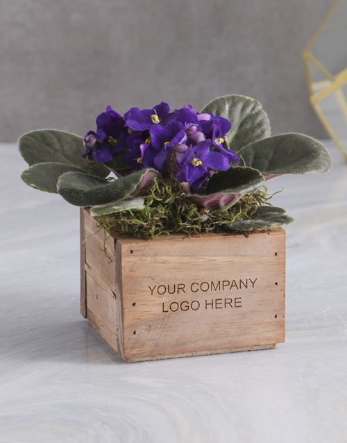 colour: Personalised African Violet Crate!