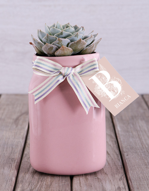 love-and-romance: Personalised Potted Succulent!