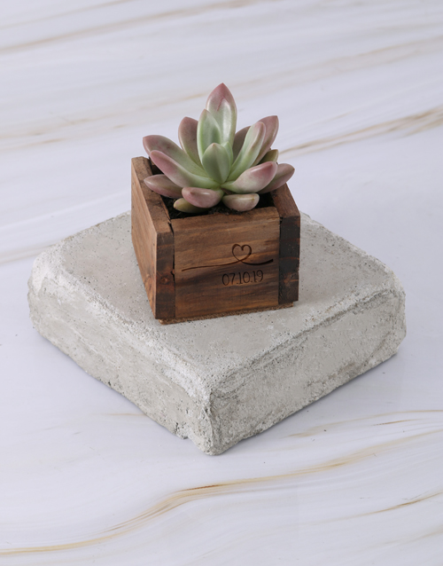 anniversary: Personalised Special Day Succulent!