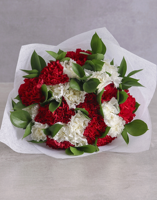 year-end: Striking Red and White Carnations !
