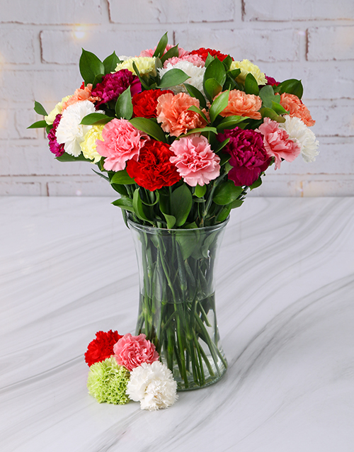 carnation: Mixed Carnations in a Tall Glass Vase!