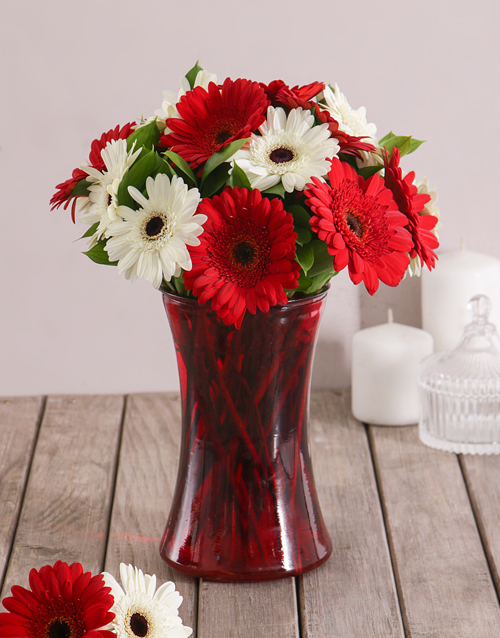 diwali: Red and White Love Gerbera Daisies in Red Vase!
