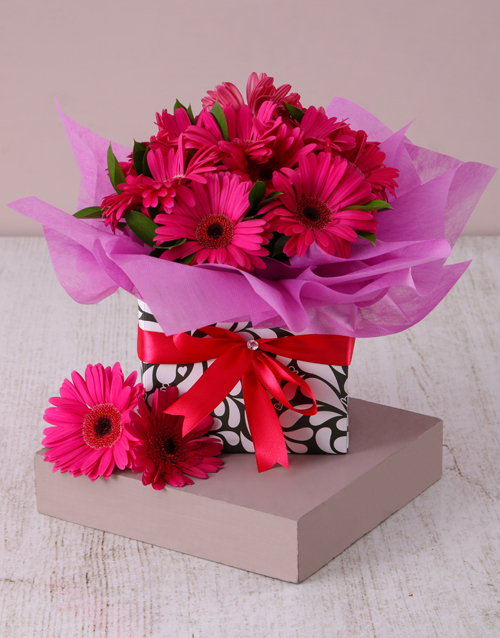 flowers: Cerise Gerbera Daisies in a Geometric Box!