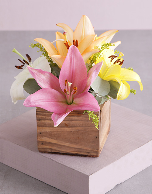 colour: Wooden Variety Lily Blossoms!