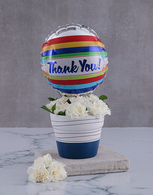 thank-you: Thank You Carnations In A Pot!