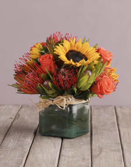 colour: Majestic Colour Blossoms!