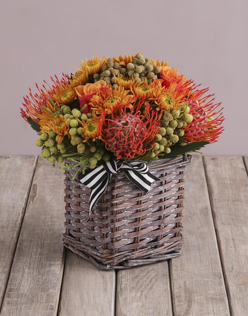 colour: Serene Flower Blossoms!