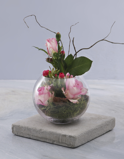colour: Intimate Flower Varieties!