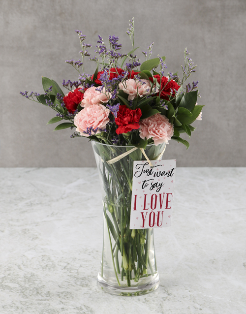 colour: Pink And red Pleasures Carnation Arrangement!