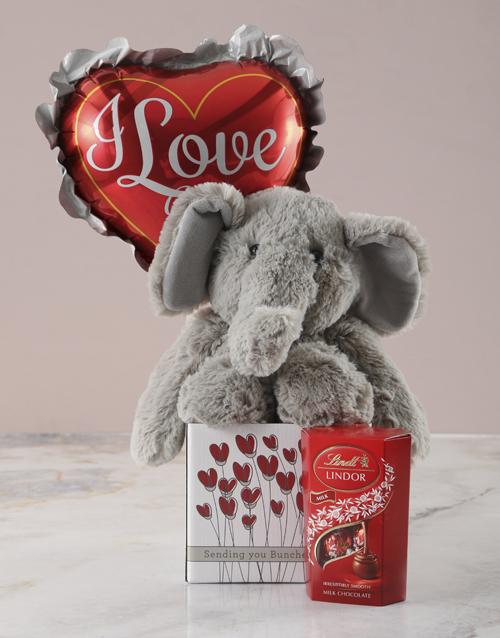 teddy-bears: Romantic Elephant Plushie Hamper!