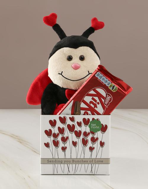 teddy-bears: Ladybug  Love And KitKat Hamper!