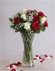 Picture of Full Red and White Roses in a Vase!