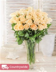 Picture of Cream Roses in a Vase!