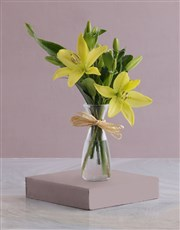 Picture of Milk Jug of Lilies!