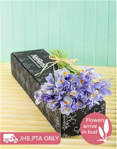 gifts: Baby Blue Irises in a Gift Box!