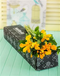 flowers: Yellow Irises in a Gift Box!