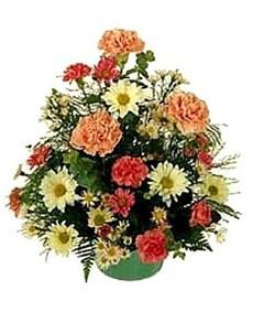 flowers: Petite Posy!
