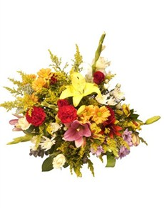 flowers: Sunny and Bright!