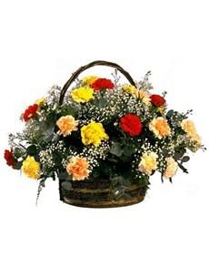 flowers: Rainbow Carnation Basket!