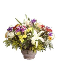 flowers: Colourful Abundance!