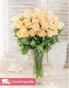 gifts: Cream Roses in a Vase!