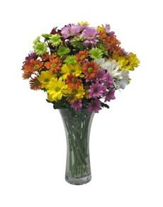 flowers: Vase of Chrysanthemum Daisies!